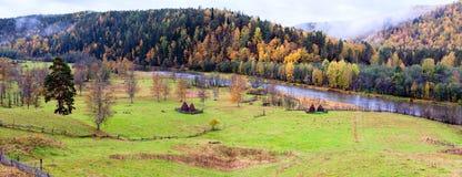 Paesaggio della montagna di colore nella stagione di autunno Immagini Stock