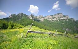 Paesaggio della montagna di estate Fotografia Stock Libera da Diritti