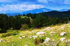 Paesaggio della montagna di estate Fotografia Stock