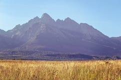 Paesaggio della montagna di estate Immagine Stock