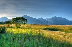 Paesaggio della montagna di estate Immagini Stock