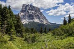 Paesaggio della montagna di estate - dolomia, Italia Immagini Stock Libere da Diritti