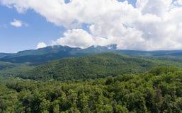 Paesaggio della montagna di estate Montagne e nuvole boscose Fotografia Stock Libera da Diritti