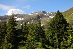 Paesaggio della montagna di estate nelle alpi di Transylvanian Immagine Stock Libera da Diritti