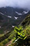 Paesaggio della montagna di estate nelle alpi di Transylvanian, con le nuvole piovose nebbiose Immagini Stock