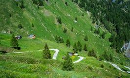 Paesaggio della montagna di estate in Trentino Alto Adige Vista da Passo Rolle, dolomia italiane, Trento, Italia Strada della mon Immagine Stock Libera da Diritti
