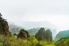 Paesaggio della montagna di giallo della montagna di Huangshan, l'Anhui, Cina con uccelli neri Fotografia Stock