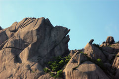 Paesaggio della montagna di Huangshan Fotografie Stock Libere da Diritti
