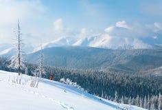 Paesaggio della montagna di inverno fotografie stock libere da diritti