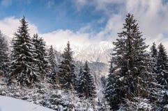 Paesaggio della montagna di inverno Fotografie Stock