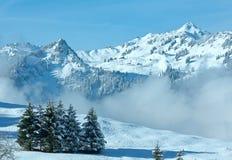 Paesaggio della montagna di inverno (Austria, Baviera) Immagine Stock