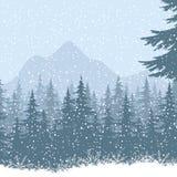 Paesaggio della montagna di inverno con gli abeti Fotografia Stock