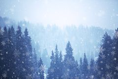 Paesaggio della montagna di inverno con la caduta della neve immagine stock libera da diritti