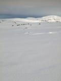 Paesaggio della montagna di inverno con la renna Fotografie Stock Libere da Diritti