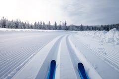 Paesaggio della montagna di inverno con le tracce di sci di fondo fotografia stock libera da diritti