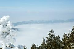 Paesaggio della montagna di inverno con nebbia Fotografia Stock