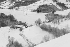 Paesaggio della montagna di inverno di Transylvanian Fotografie Stock