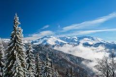 Paesaggio della montagna di inverno e picchi innevati in Europa Fotografie Stock