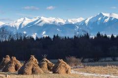 Paesaggio della montagna di inverno Vista dalla valle al mou dei picchi nevosi Fotografie Stock Libere da Diritti