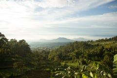 Paesaggio della montagna di Lawu Immagine Stock