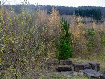 paesaggio della montagna di lingua gallese degli alberi e dei cespugli con le grandi pietre Immagini Stock Libere da Diritti