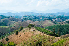 Paesaggio della montagna di Nan, Tailandia Immagini Stock