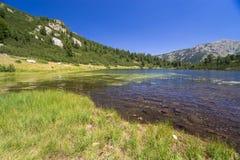 Paesaggio della montagna di Pirin Fotografie Stock Libere da Diritti