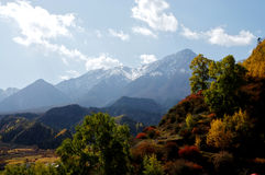 Paesaggio della montagna di Qilian Immagini Stock
