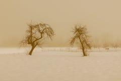 Paesaggio della montagna di Snowy con Julian Alps Fotografie Stock Libere da Diritti