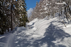 Paesaggio della montagna di Snowy con Julian Alps Immagini Stock Libere da Diritti