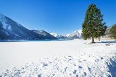 Paesaggio della montagna di Snowy nelle alpi Immagini Stock Libere da Diritti