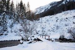 Paesaggio della montagna di Snowy nelle alpi bavaresi Immagine Stock