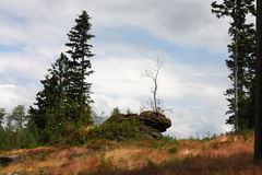 Paesaggiodella montagna di umava di Å, repubblica Ceca Fotografie Stock