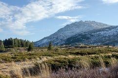 Paesaggio della montagna di Vitosha, Bulgaria Fotografia Stock Libera da Diritti