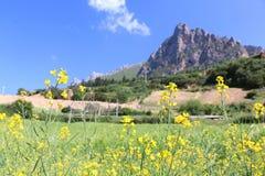 Paesaggio della montagna di Zhagana Immagine Stock Libera da Diritti