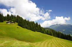 Paesaggio della montagna e del chalet immagini stock libere da diritti