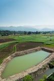 Paesaggio della montagna e dell'azienda agricola Fotografia Stock Libera da Diritti