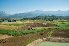 Paesaggio della montagna e dell'azienda agricola Immagine Stock