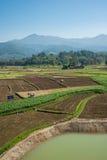 Paesaggio della montagna e dell'azienda agricola Immagine Stock Libera da Diritti
