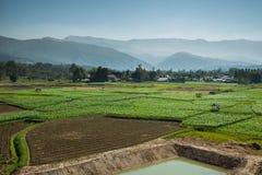 Paesaggio della montagna e dell'azienda agricola Fotografia Stock
