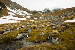 Paesaggio della montagna e della corrente Fotografie Stock Libere da Diritti