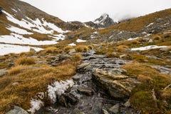 Paesaggio della montagna e della corrente Immagine Stock