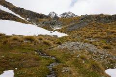 Paesaggio della montagna e della corrente Fotografia Stock Libera da Diritti