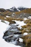 Paesaggio della montagna e della corrente Fotografia Stock