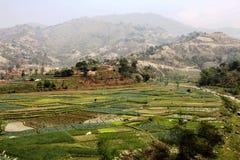 Paesaggio della montagna ed a terrazze coltivando in Himalaya più bassa i Fotografia Stock