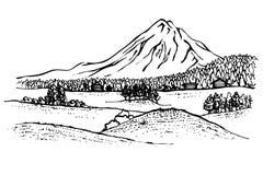 Paesaggio della montagna, foresta Fotografie Stock Libere da Diritti