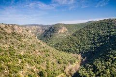 Paesaggio della montagna, Galilea superiore in Israele Immagini Stock