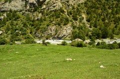 Paesaggio della montagna, gola di Galuyan, Kirghizistan Immagini Stock