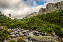 Paesaggio della montagna il giorno nuvoloso Immagini Stock