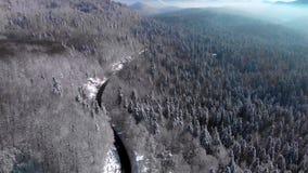 Paesaggio della montagna, jezero di Lokvarsko, Gorski kotar, Croazia fotografia stock